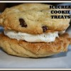 Icecream Cookie Treats